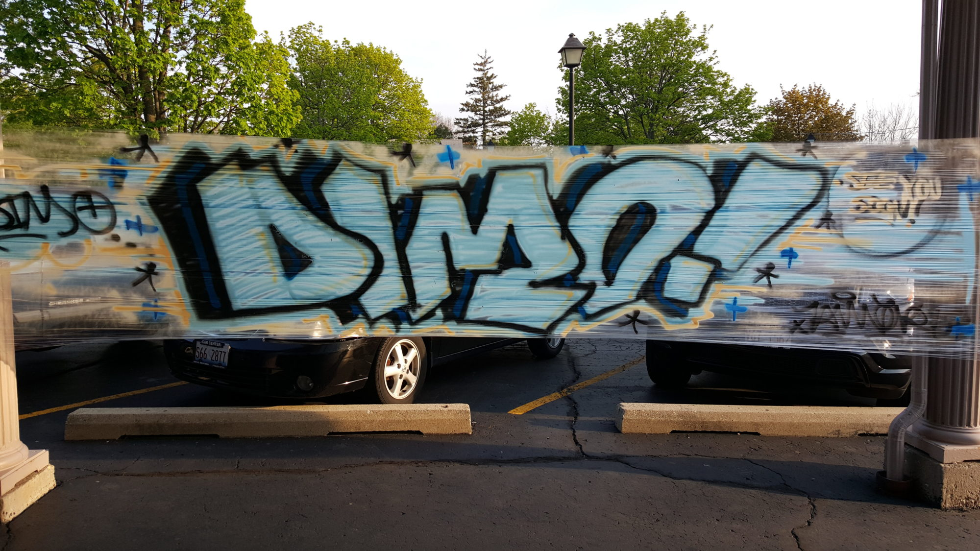 Dimo mural